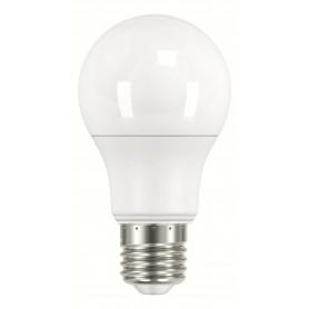 LAMPADA LAMPADINA GOCCIA LED 11,5W 230V E27 6500K BOT LIGHTING ELD1012X1